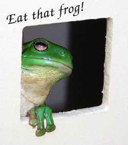 Eating the frog - first!