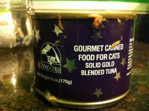 The cat's favourite tinned food